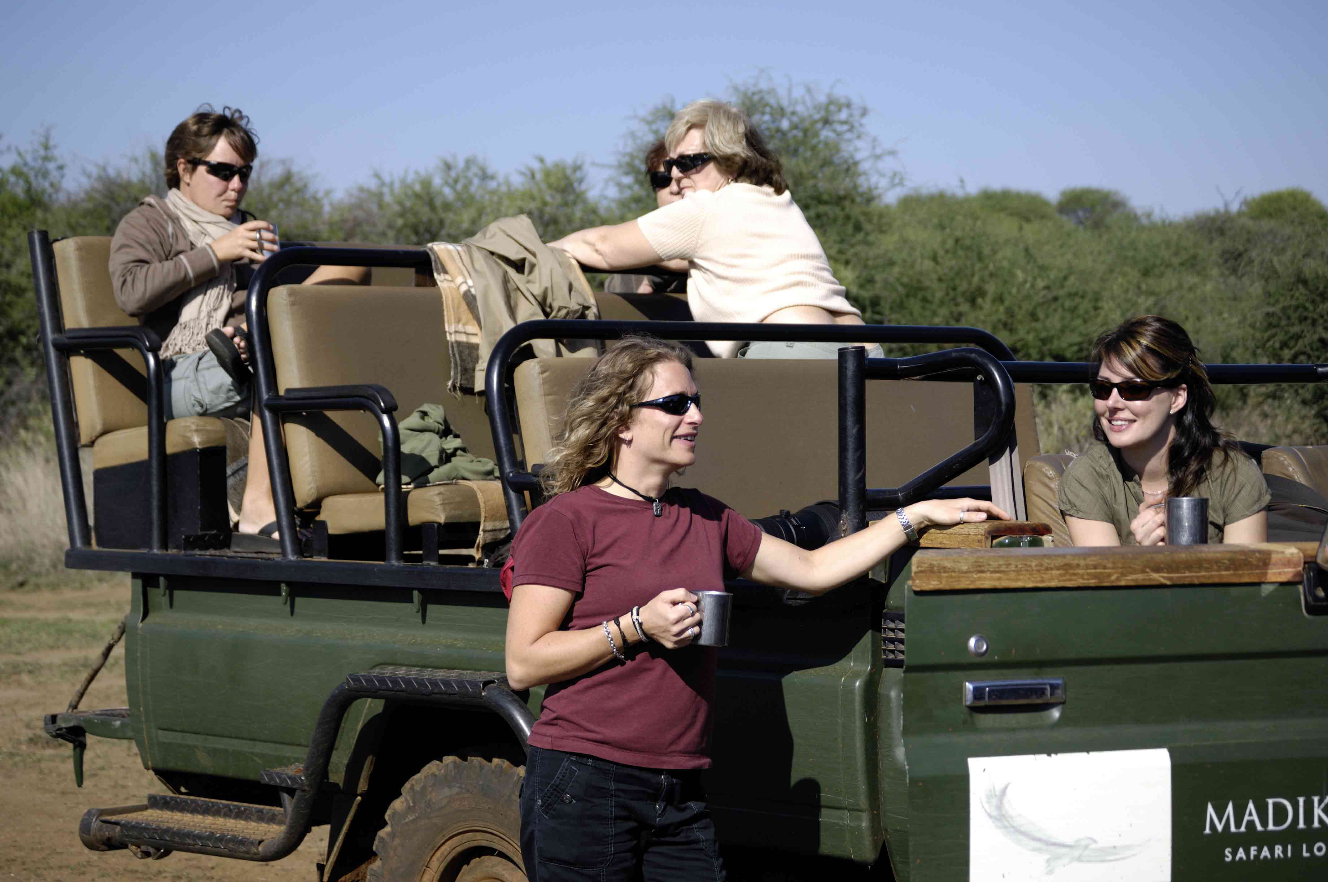 ¿Cuándo es el mejor momento para ir en un safari africano